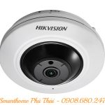 Camera IP DS-2CD2935FWD-IS